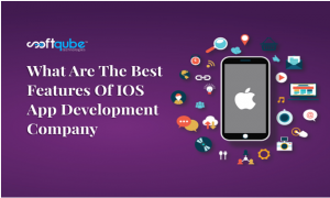 Best Features of iOS Application
